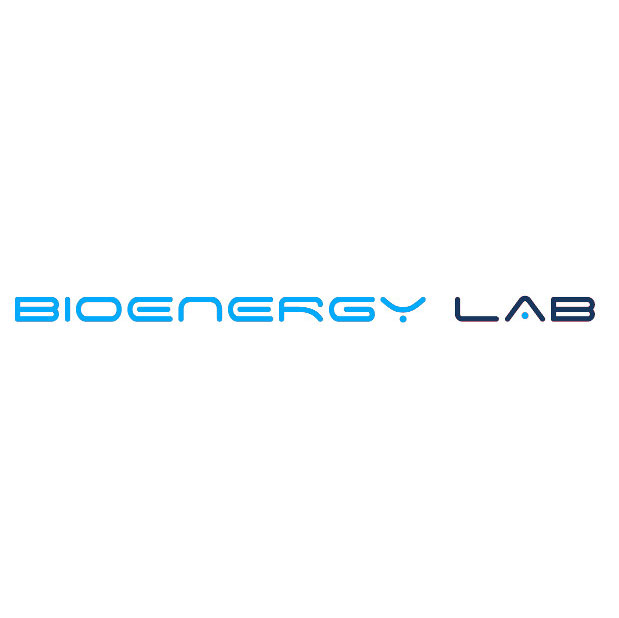 http://www.arezzobenesserefestival.it/wp-content/uploads/2019/11/bioenergy-logo.jpg